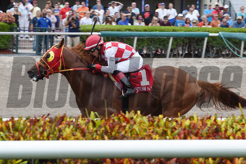 War Giant wins the 2018 Carry Back Stakes<br /> Coglianse Photos/Lauren King