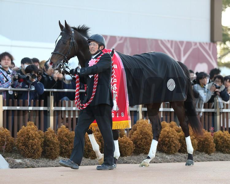 Danon Premium (JPN) wins the 2018 Yayoi Sho
