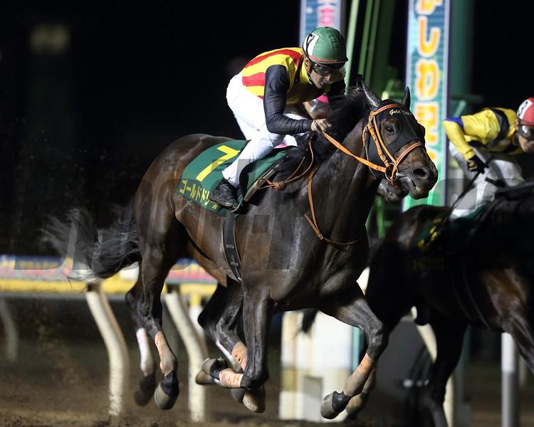 Gold Dream wins the 2018 Kashiwa Kinen <br /> Masakazu Takahashi Photo