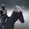 Exercise rider Danny Ramsey takes a McPeek trainee out for a morning exercise on the Oklahoma Training Center track Wednesday Aug. 15, 2018 in Saratoga Springs, N.Y.  Photo by Skip Dickstein