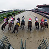 Pimlico Race 6 Starting Gate Remote