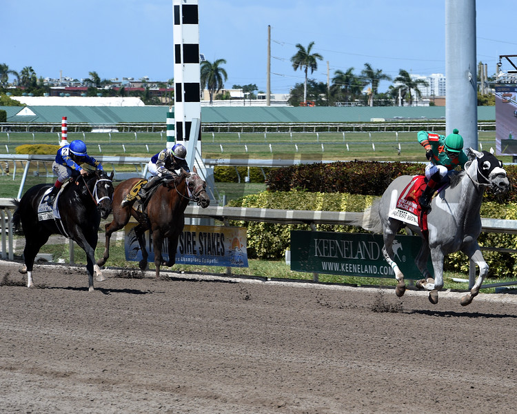 Conquest Big E; Jose Batista; Gulfstream Park Hardacre Mile Stakes; G2; Gulfstream Park; March 31 2018
