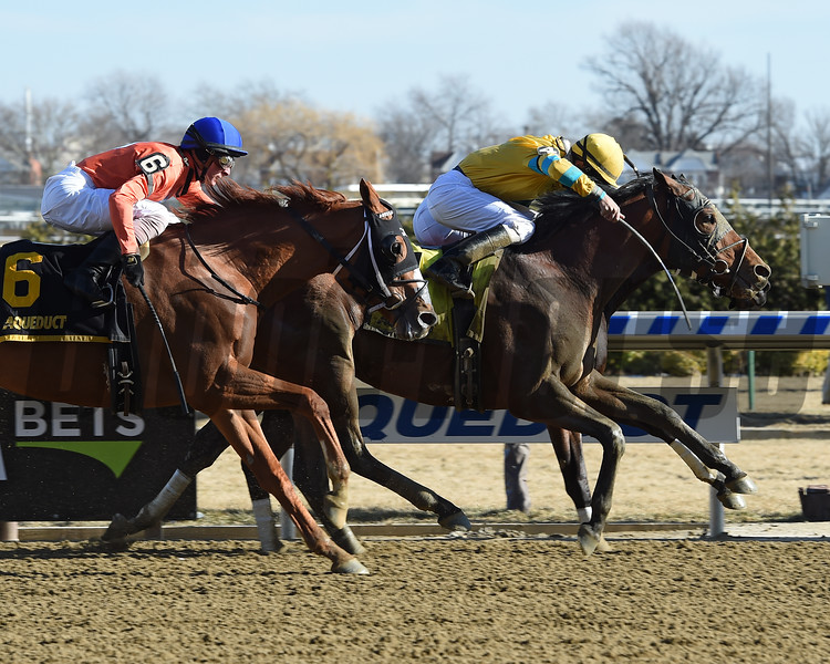 Backsideofthemoon wins the 2018 Jazil Stakes<br /> Coglianese Photos/Chelsea Durand