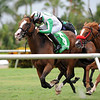 Archer Road wins the 2018 Copingaway Stakes<br /> Coglianese Photos/Derbe Glass