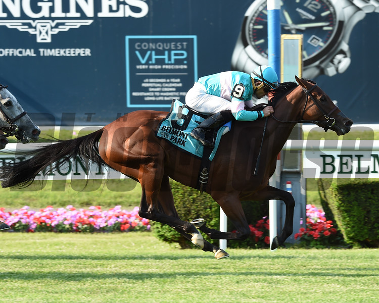 La Signare wins the 2018 Wonder Again Stakes<br /> Coglianse Photos/Susie Raisher