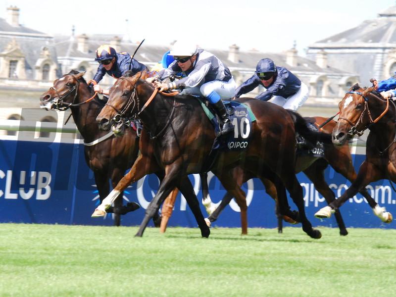 Study Of Man wins the Prix du Jockey Club (G1) at Chantilly Racecourse.