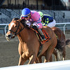 Holiday Disguise wins the 2018 Distaff Handicap<br /> Coglianese Photos/Chelsea Durand