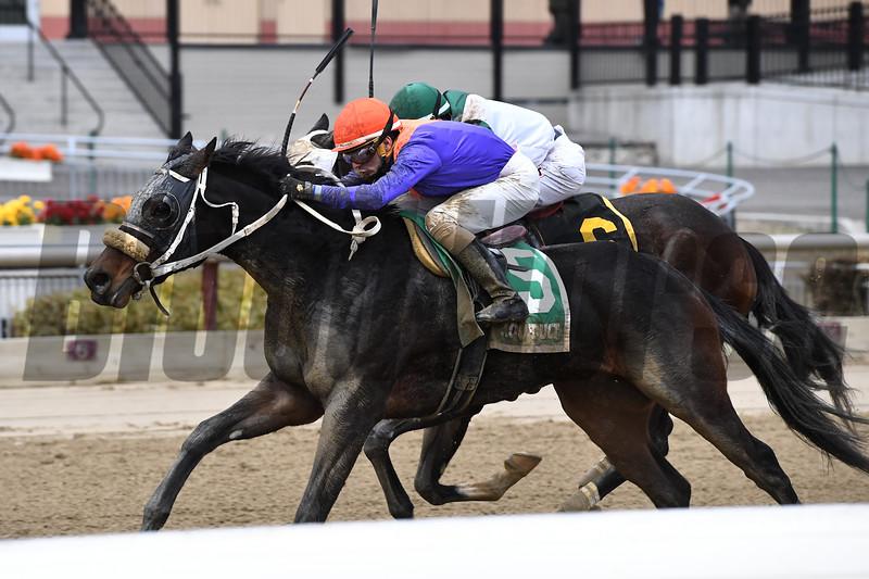Aunt Babe wins the 2018 Franklin Square Stakes<br /> Coglianese Photos/Joe Labozzetta