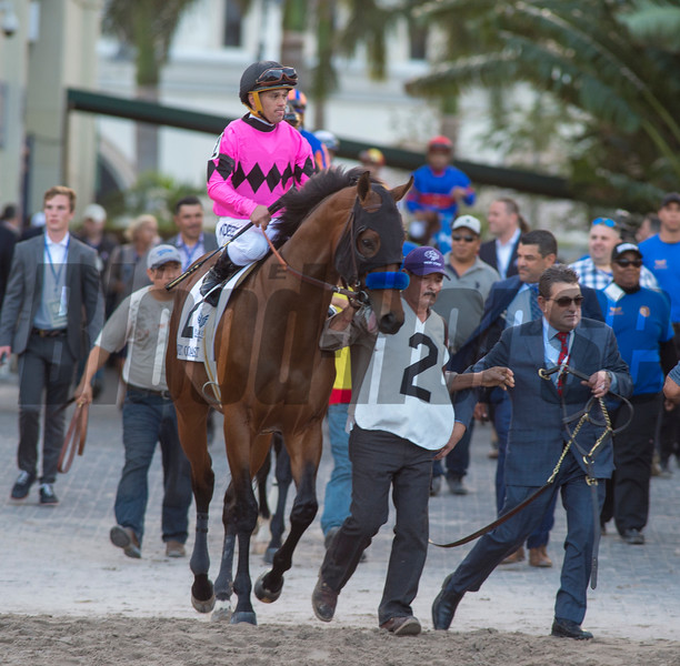 West Coast with Jaier Castellano up  The Pegasus Cup   @ Gulfstream Park   Jan 26 2018; Joe DiOrio/Winningimages.biz