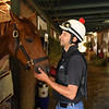 Barn foreman and exercise rider David Meah spends time with Madam Dancealot at the barn of Richard Baltas at Santa Anita. Photo: Wally Skalij