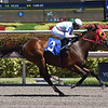 Shaft of Light - Starter Optional Claiming, Gulfstream Park - March 16, 2018