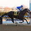 Avery Island wins the 2018 Withers<br /> Coglianese Photos/Chelsea Durand