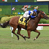 Little Chesney wins the 2018 Jupiter Beach Stakes	<br /> Coglianese Photos/Leslie Martin