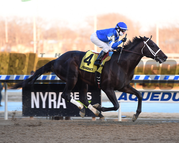Avery Island wins the 2018 Withers<br /> Coglianese Photos/Susie Raisher