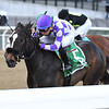 Baby Boss wins the 2018 New York Stallion Stakes<br /> Coglianese Photos/Joe Labozzetta
