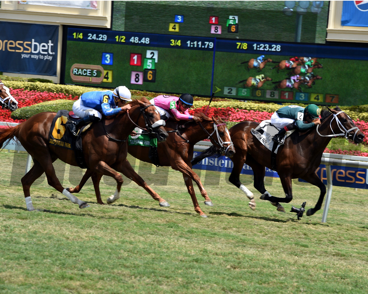 Figarella's Queen; Luis Saez; Sanibel Island Stakes; Gulfstream Park; March 31 2018