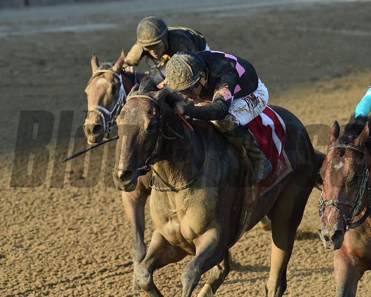 Realm wins the Alydar Stakes at Saratoga Sunday, August 5, 2018. Photo: Coglianese Photo/Elsa Lorieul
