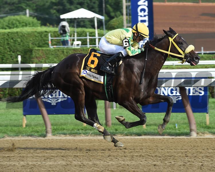 Tricky Escape wins the Waya Stakes at Saratoga Sunday, August 12, 2018. Photo: Coglianese Photo/Taylor Ejdys