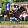 Diversify wins the 2018 Whitney<br /> Coglianese Photos