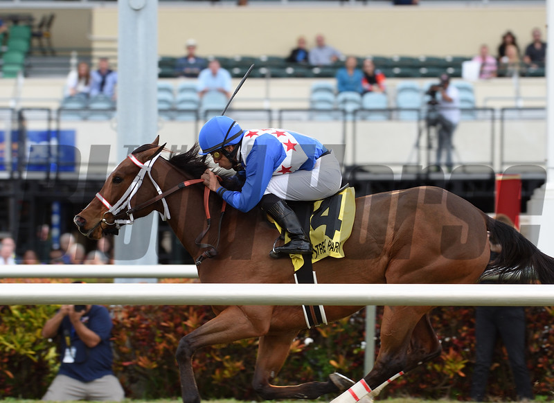 Starship Jubilee wins the 2018 Sunshine Millions Filly and Mare Turf<br /> Coglianese Photos/Lauren King