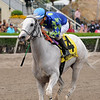 Mr. Jordan wins the 2018 Big Drama Stakes<br /> Coglianese Photos/Kenny Martin