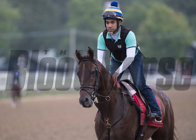 Done Deal with exercise rider Carlos Deyand Wednesday July 25, 2018 at the Saratoga Race Course.  Photo by Skip Dickstein