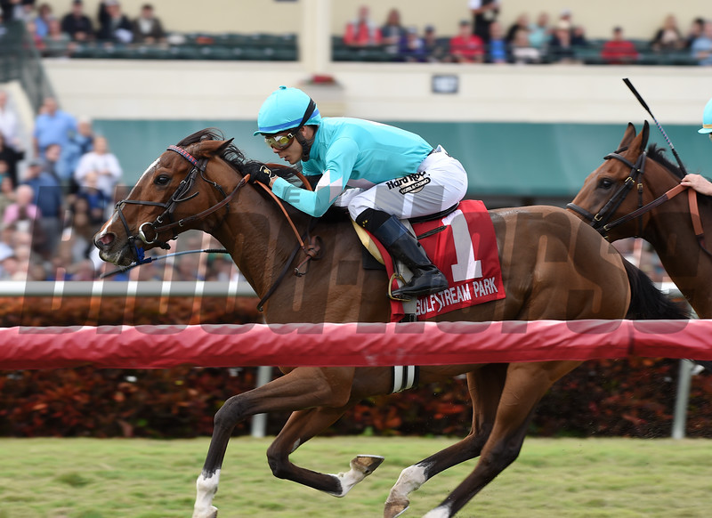 Thewayiam wins the 2018 Sweetest Chant Stakes<br /> Coglianese Photos/Lauren King
