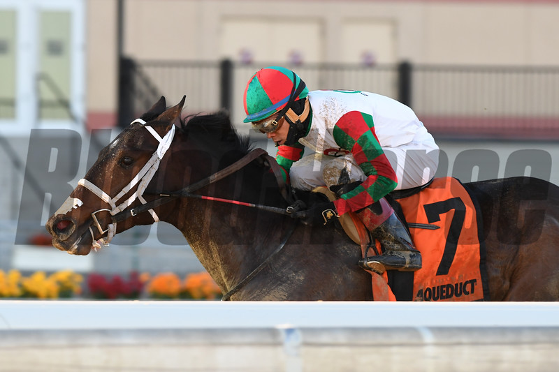 Firenze Fire wins the 2018 Jerome Stakes<br /> Coglianese Photos/Robert Mauhar