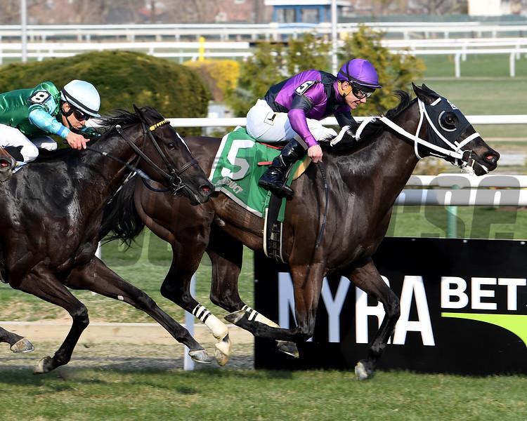 Black Stetson wins the 2018 Bridgetown Stakes<br /> Coglianese Photos/Viola Jasko