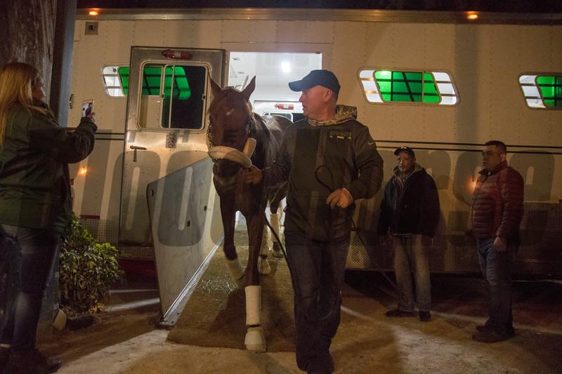 Gun Runner & Scott Basi arrive @ Gulfstream Park.; . Jan 18 2018; ©Joe DiOrio/Winningimages.biz