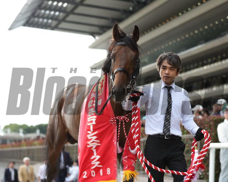 Le Vent Se Leve, Unicorn Stakes, G3, Tokyo Racecourse, June 17, 2018