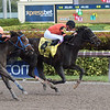 Cicatrix wins the 2018 Glitter Woman Stakes<br /> Coglianese Photos/Leslie Martin