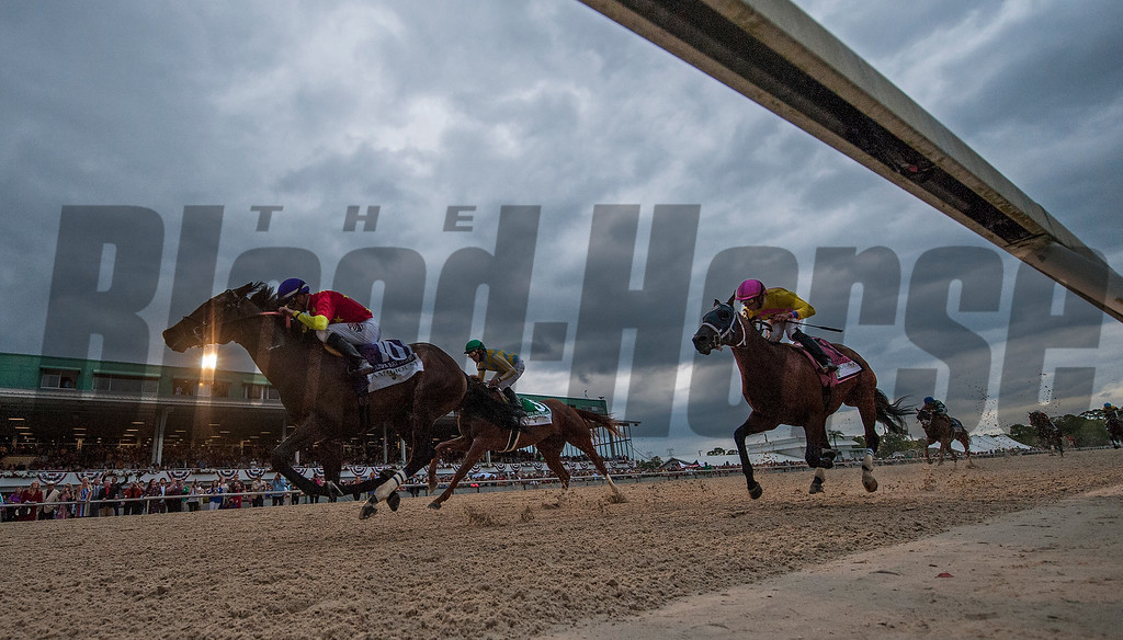 Quip with Florent Geroux wins TheLambholm South  Tampa Bay Derby  . @ Tampa Bay Downs. March10 2018<br /> © Joe DiOrio/Winningimages.biz