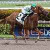 Onebrethatatime - Maiden Win, Gulfstream Park, January 10, 2018<br /> Coglianese Photos/Lauren King