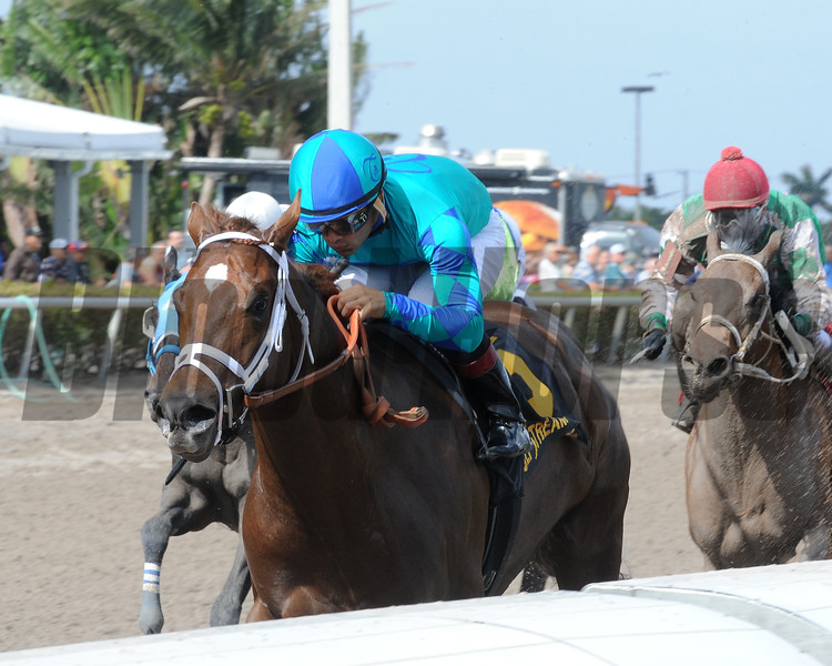 Strike Power wins the 2018 Swale Stakes<br /> Coglianese Photos/Kenny Martin