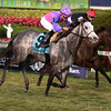 Stormy Victoria; Joel Rosario; South Beach Stakes; Gulfstream Park; January 27 2018
