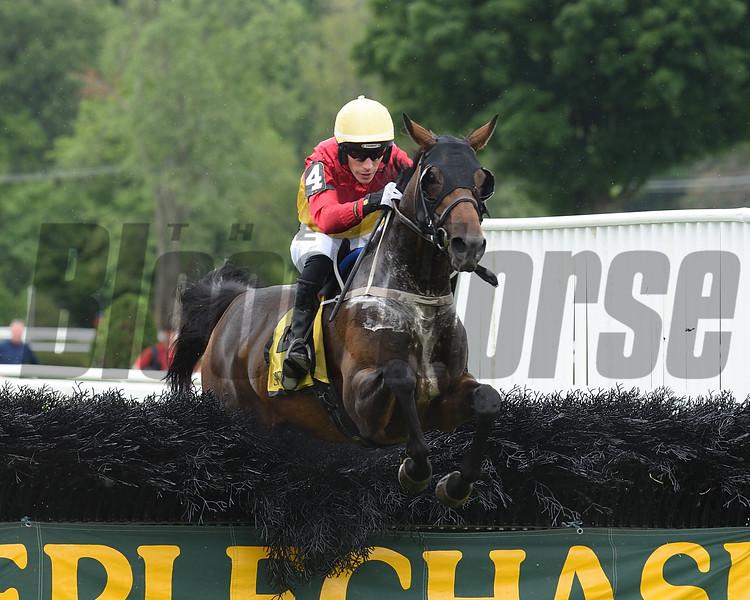 New Member wins the 2018 Jonathan Kiser Novice Stakes<br /> Coglianese Photos/Stacey Hetherington