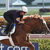 Promises Fulfilled - Gulfstream Park, March 24, 2018<br /> Coglianese Photos