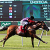 Call To Mind Belmont Gold Cup Invitational Chad B. Harmon