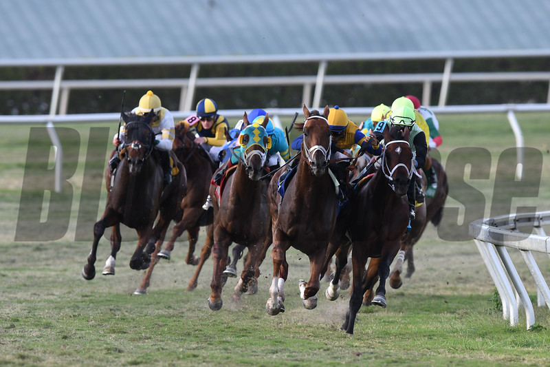 Hi Happy wins the 2018 Pan American Stakes<br /> Coglianese Photos/Andie Biancone