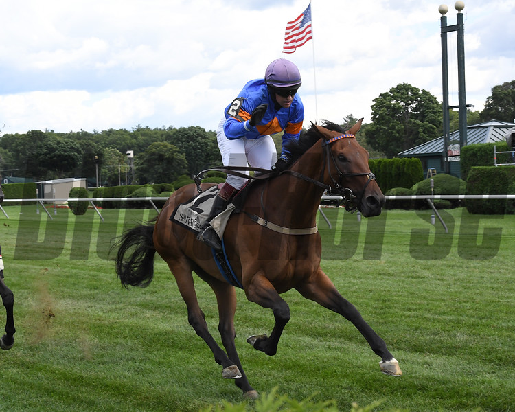 Optimus Prime wins the New York Turf Writers Cup<br /> Coglianese Photos