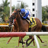 Little Chesney wins the 2018 Jupiter Beach Stakes	<br /> Coglianese Photos/Kenny Martin