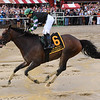 DIversify wins the 2018 Whitney<br /> Coglianese Photos/Chelsea Durand