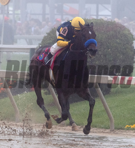 The Ax Man rolls through the fog to win the 21st running of The Sir Barton Stakes at Pimlico Race Course Saturday May 19, 2018 in Baltimore, MD <br /> Photo by Skip Dickstein