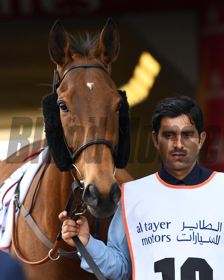 Big Orange; Dubai Gold Cup; G2; Meydan Race Course; Dubai; March 31 2018