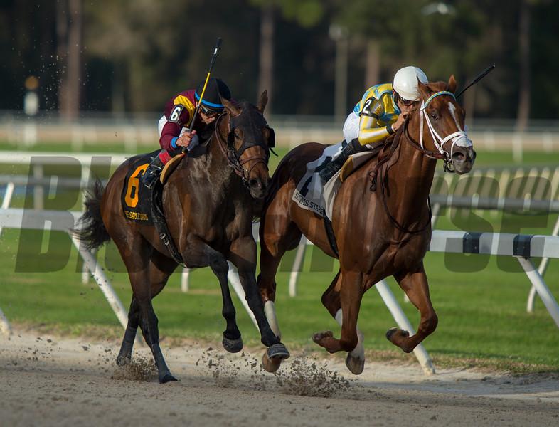 Flameaway with Jose Lezcano up wins Sam F Davis @ Tampa Bay Downs. <br /> © Joe DiOrio/Winningimages.biz