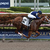 King Humor - Maiden Win Gulfstream Park, February 2, 2018<br /> Coglianese Photos/Leslie Martin