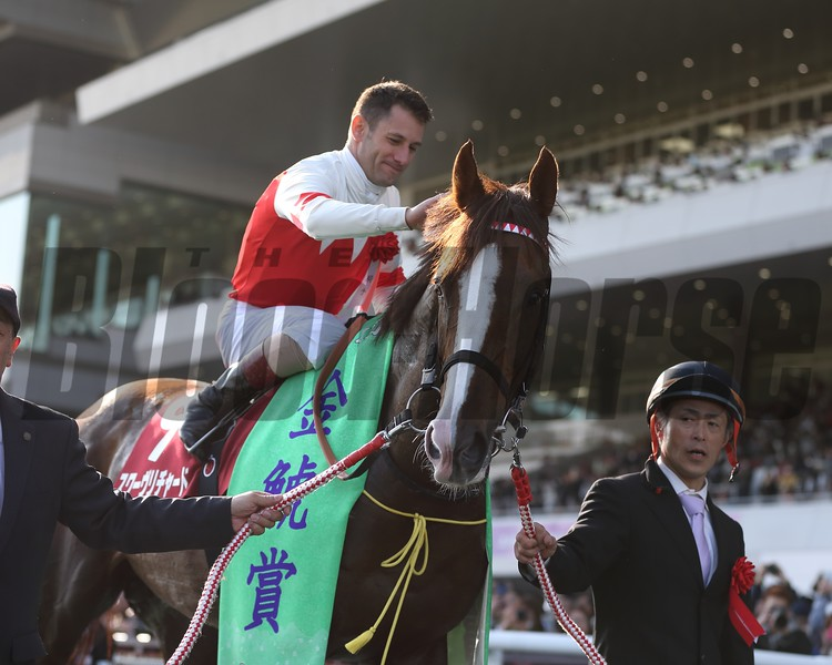 Suave Richard, Kinko Sho, G2, Chukyo Racecourse, March 11 2018