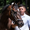 Wonder Gadot, in the hands of Casse Racing Stables foreman Omar Delcid gets her first look at the Saratoga Race Course Monday July 30, 2018 after a 10 hour van ride from Woodbine Race Course.  Photo by Skip Dickstein