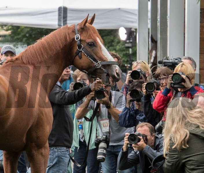 Justify - Morning - Belmont Park - 06-10-18 <br /> © Rick Samuels/The Blood-Horse